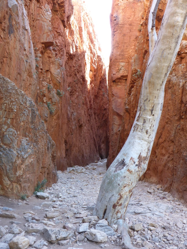 The entrance to Standly Chasm.
