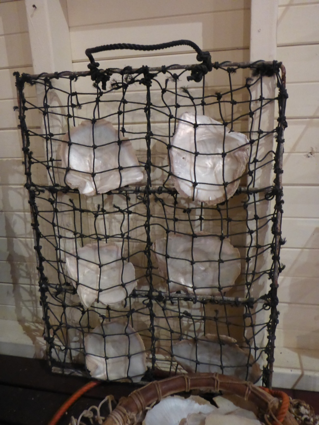 The cages that the oyster grows inside of.