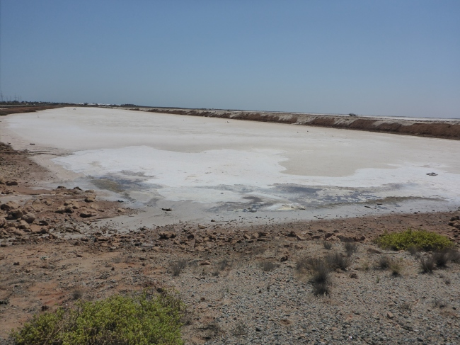 Solar powered salt production.