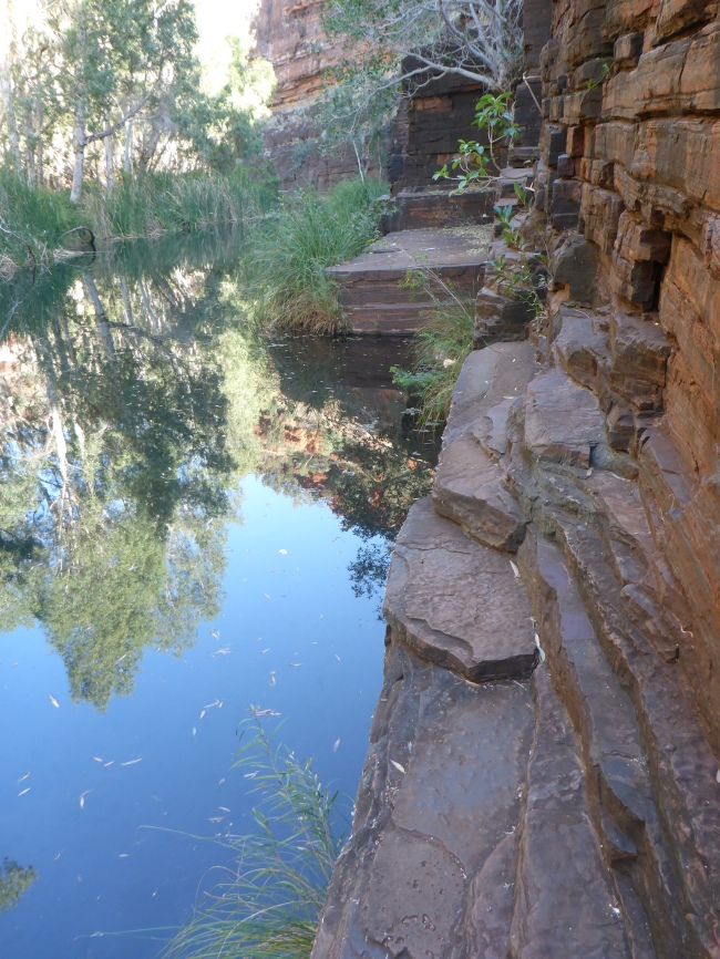 Cool, deep pools and hard, gray rock, down in Dales Gorge.