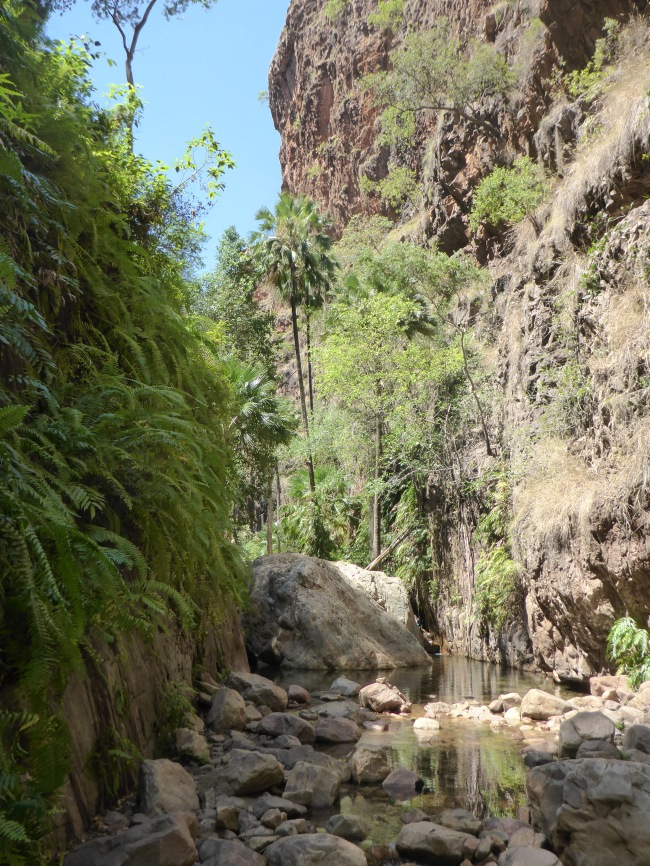 Up into El Questro Gorge.