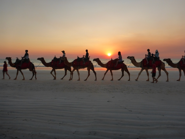 Camel riding at sunset. Not a bad way to round the day off.
