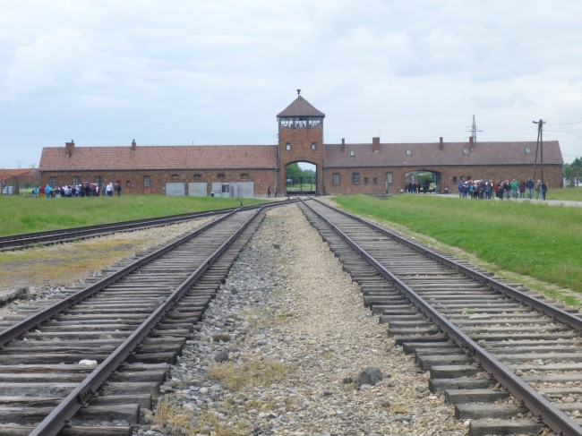 The rail lines that took Jews into the camp.