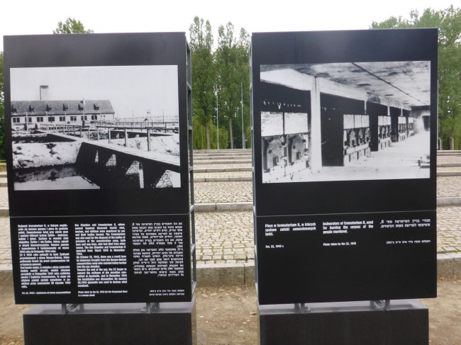 Photos of the gas chambers and crematoria taken by the Nazis.