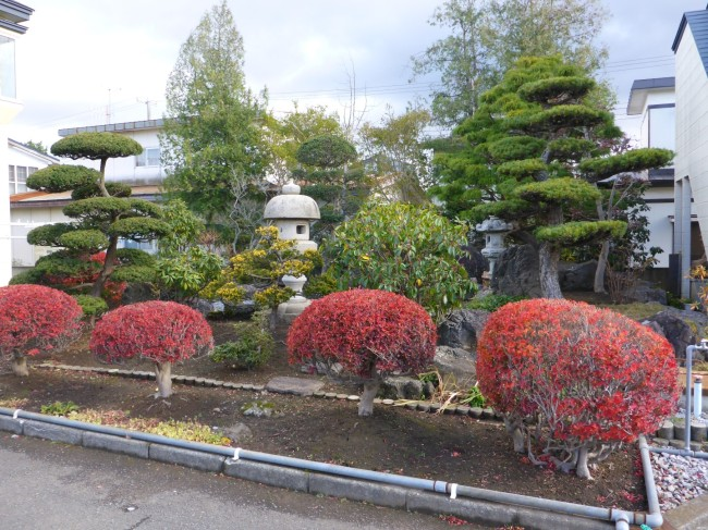 The Japanese definitely know how to create a lovely garden.