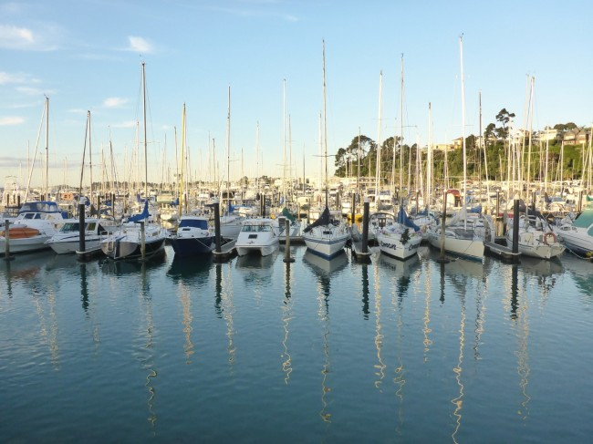 Half Moon Bay harbour. Nice, if you can afford it.