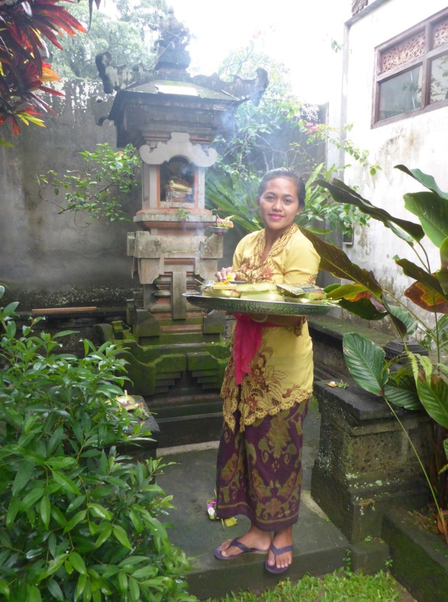 Komang takes the morning offerings to the shrine.
