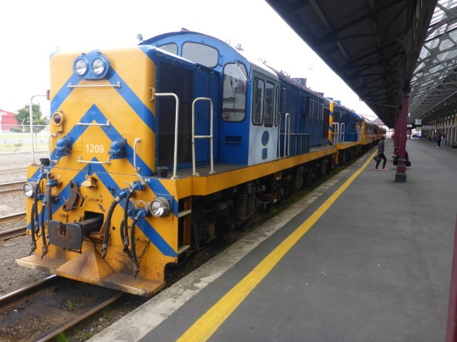 This train takes tourists out on the mountain railway from Dunedin.
