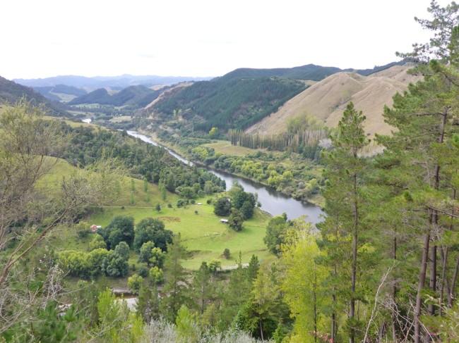 The Whanganui River.