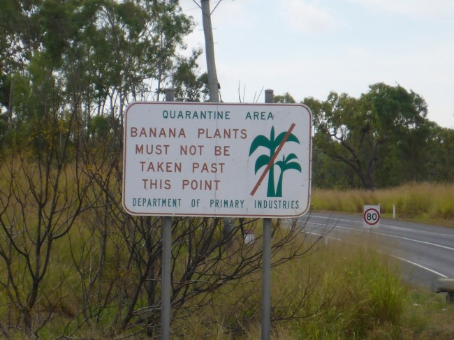 A sign which explains why Australia is so strict on imported organic matter.