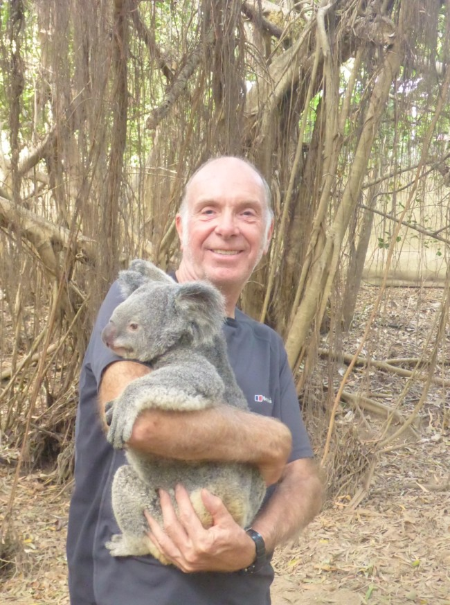 Cuddly Koala.