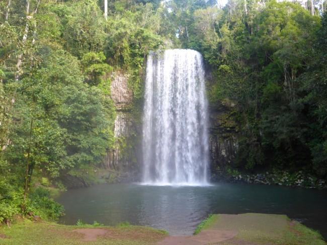 Millaa Millaa Falls.