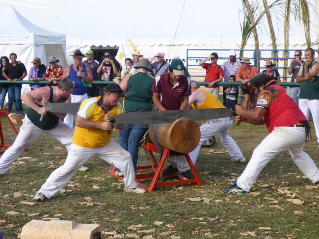 A log, a saw. It must be the log sawing competition.
