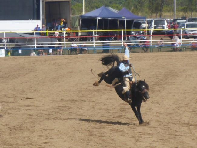 Ride him cowboy. Yeeha!