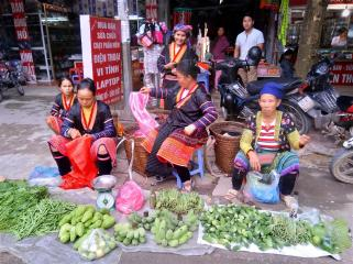 Roadside vegetable sellers.